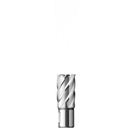 HSS Hole Cutter FE 3012